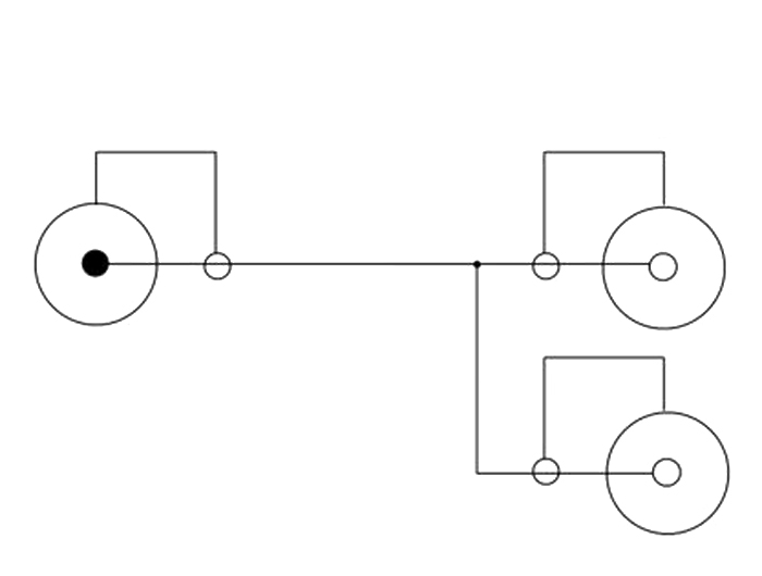 delock products 84493 delock cable rca 2 x female  u0026gt  rca 1